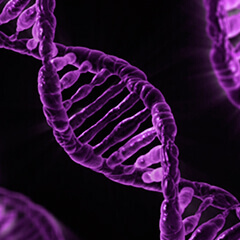 Diagnóstico Genético